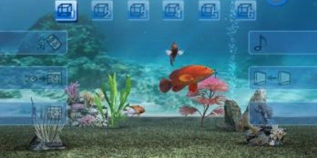 My Aquarium, Clu Clu Land and Legend of the Seven Stars