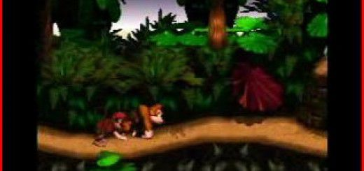 Donkey Kong Country picture